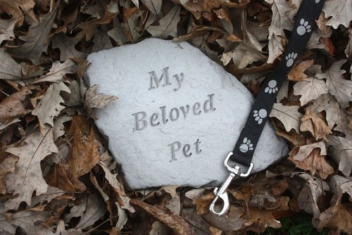 Pets deserve to be remembered