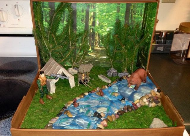2nd Grade Habitat Research And Diorama Project