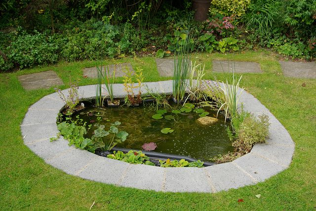 60 best fountain ideas for small gardens images on for Small garden fish pond designs