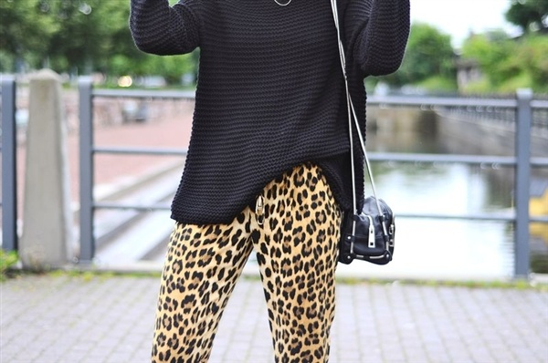 Your Daily Inspiration about Leopard