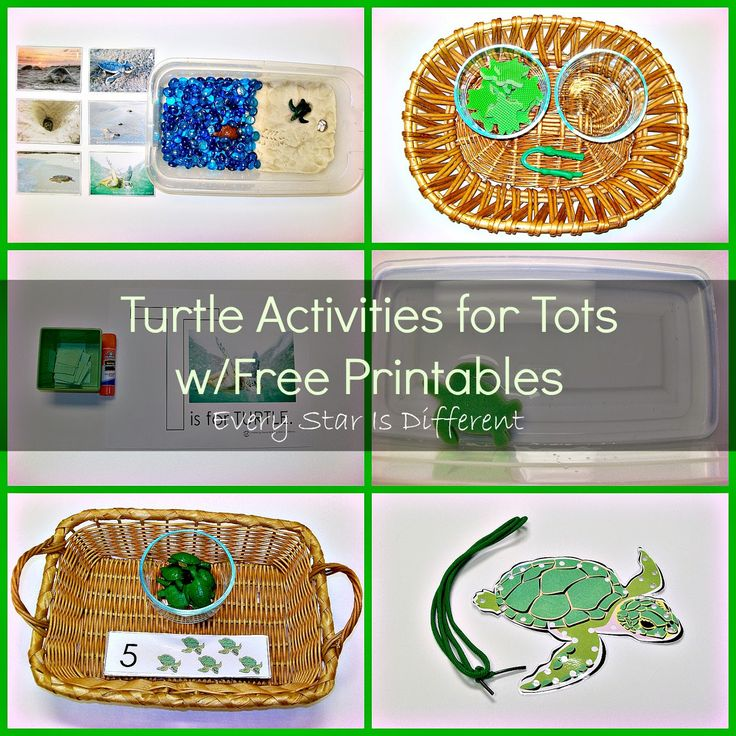 Sea Turtle Activities for Tots w/ Free Printables from Every Star Is Different