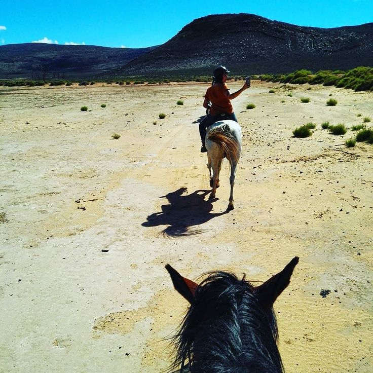 So this was #sunday #horse #riding