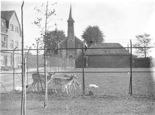 Kerkstraat, hertenkamp, Helpman
