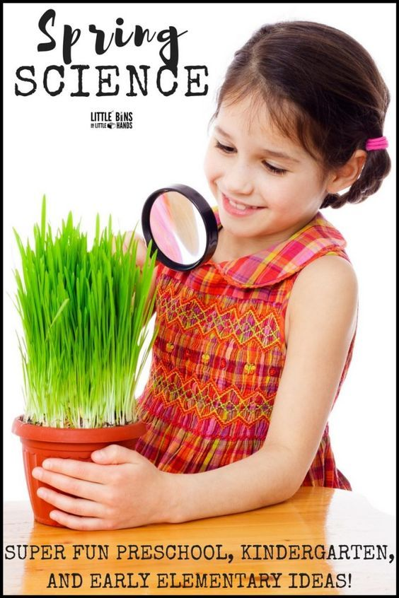 Spring Science Activities for Kids To Do Indoors and Outdoors! Fun, simple, and practical spring science ideas that are perfect for preschool science, kindergarten science, and even early elementary age science. Explore seed science, plant growth, weather changes, the water cycle, and even make bug slime.
