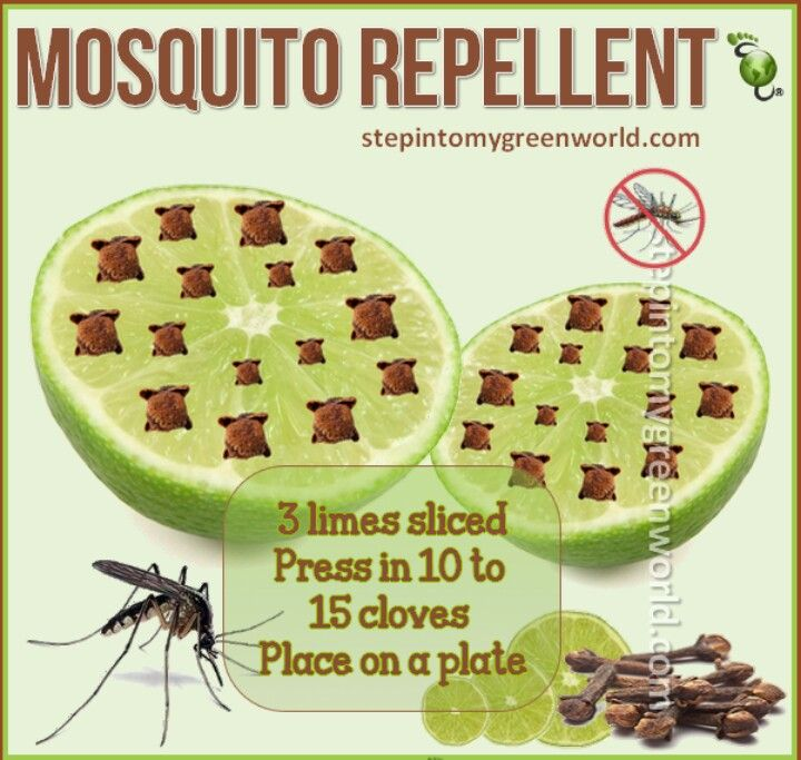 natural mosquito repellants The most frequent all-natural mosquito repellent is the type that is made at home and composed of various essential oils, plus a base of witch hazel, vegetable glycerin and/or liquid vitamin e you'll find recipes further into this article.