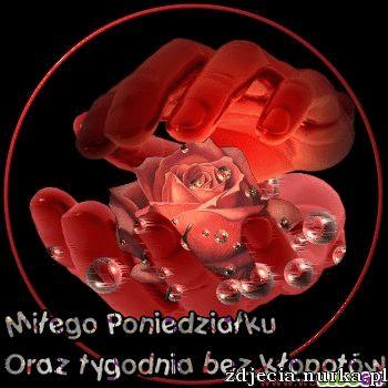 http://s1.directupload.net/images/120102/tmzgnxna.gif