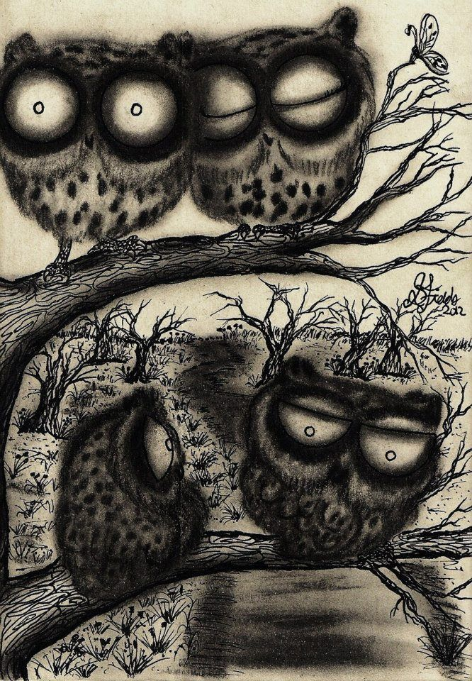 'Sooty Owls' by InkyDreamz