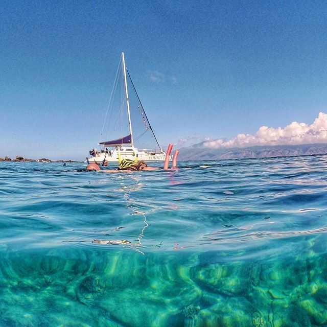"""""""You cannot discover new oceans unless you have the courage to lose sight of the shore."""" André Gide . . . . . . . . . . . #sailing #snorkeling #onelifefilmit #olfi  #globetrotter #travelblog #instatravel  #travelphotography  #igworldglobal #discoverearth #skylovers #welivetoexplore #ig_thisworld #theglobewander #earthfocus #nakedplanet #discoverearth #neverstopexploring #awesome_earthpix #natureplanet  #bestdestination #wonderfulplaces #tlpicks #fantastic_earth #theglobewander #discoverearth…"""
