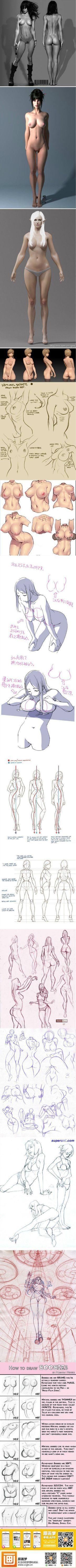 Bigswitchbladeknife.com likes drawing Body anatomy. How to draw females