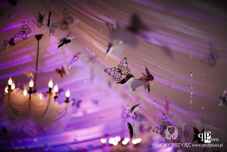 9. Butterfly Wedding,Butterfly decor,Ceiling decor,Light decor / Motylkowe wesele,Motylkowe dekoracje,Dekoracja sufitu,Dekoracja światłem,Anioły Przyjęć
