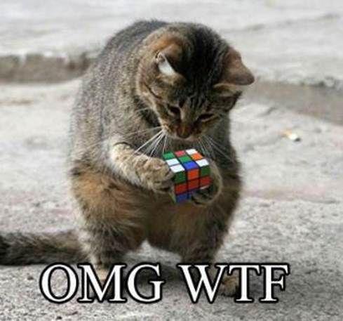 Cat-Rubiks-Cube-Fail