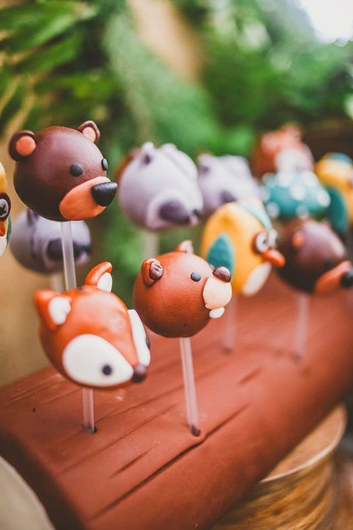 Woodland Baby Shower Cake Pops | Cake pops, Special ... |Woodland Cake Balls