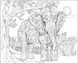 2712 best images about adult coloring therapy free for Paisley elephant coloring pages