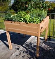 Tips om een goede verhoogde moestuinbak te kopen. De Royal Well Urban Grow kweektafel is een mooie houten bak van 102x107cm. Lees meer verhoogde moestuinbakken op www.foodplanting.com #moestuin