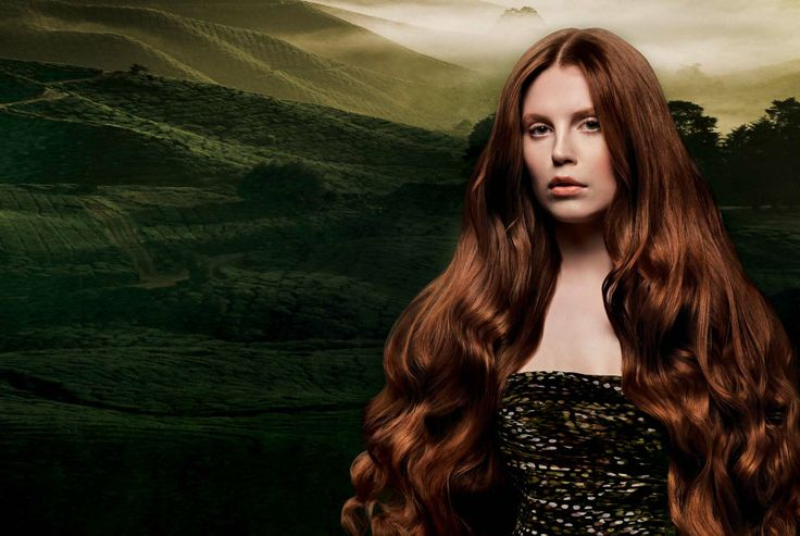 If you are in search of organic hair color or natural hair dye, look no further than MyGreenKart.
