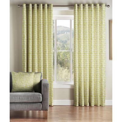 Montgomery Green 'Java' Lined Eyelet Curtains | Debenhams