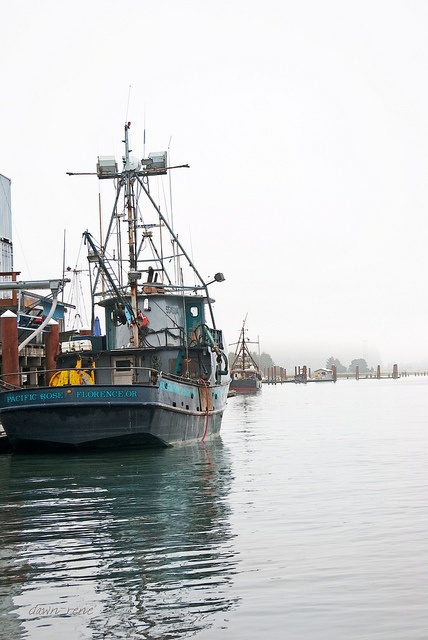 17 best images about florence oregon my home on pinterest for Deep sea fishing oregon coast