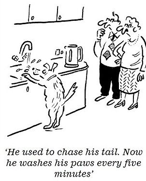 Does your Deaf Dog Exhibit Signs of OCD? via @deafdogsrock