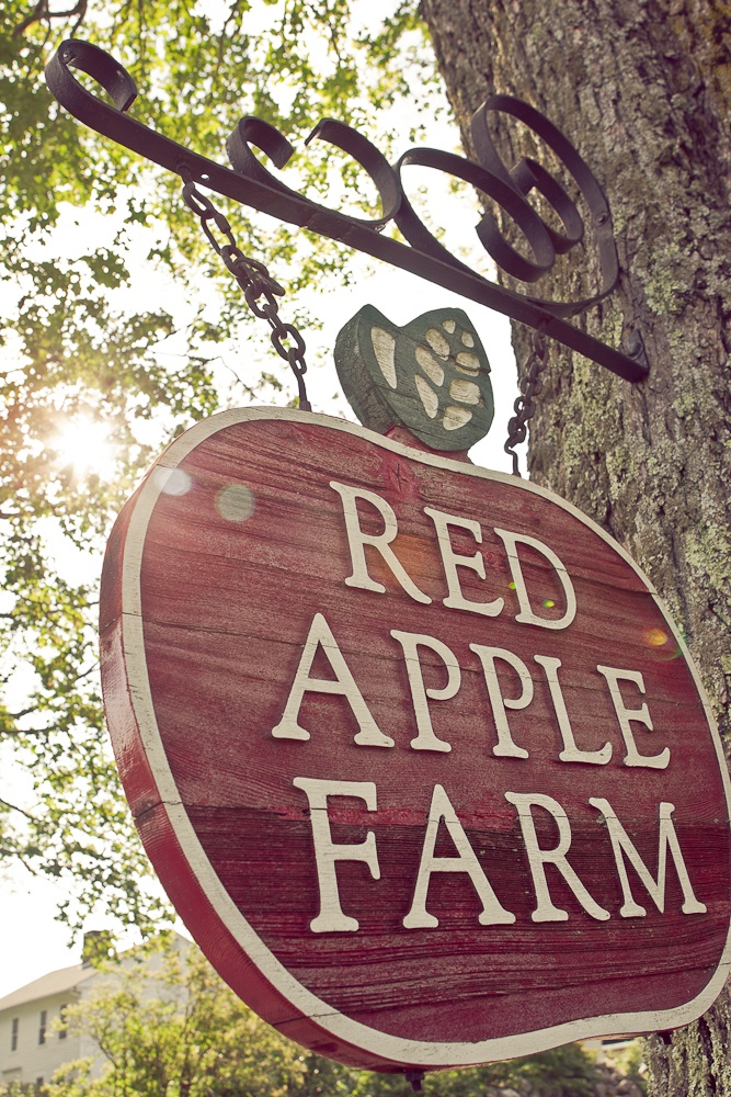 Boro Creative Visions: Jesse and Danielle, Red Apple Farm, MA Wedding Photography