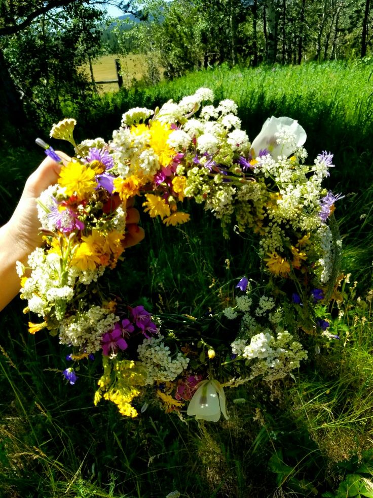 Flower crown, nature, colorful, pretty, green, fields