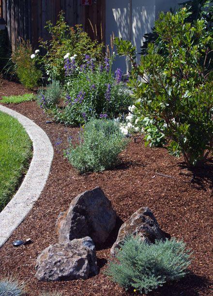 25 Best Ideas About Drought Tolerant Garden On Pinterest