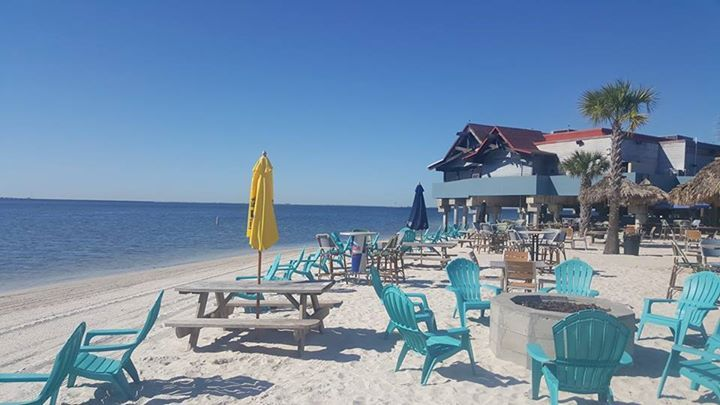 Beach all groomed and ready for a great weekend. The band lineup this weekend is the absolute best. FLYTE BAND DANNY BRANTLEY AND IMPLUSE. Beer specials  and the NFL ticket on Sunday. There is only one place to be this weekend. #tampa only real #tikibar.  #whiskeyjoes #rangloo, #bar, #accessories