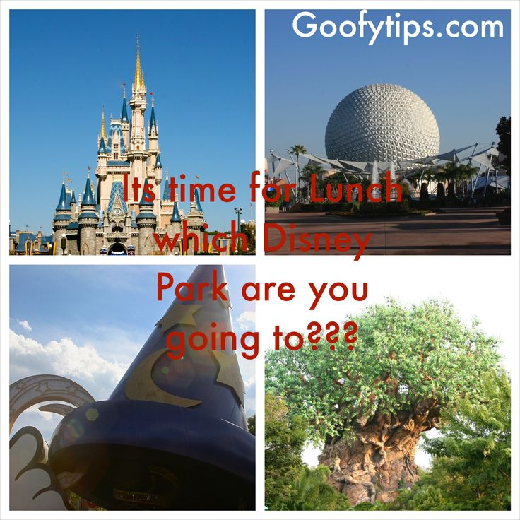 #Disney #Disneyfood #waltdisneyworld #WDW