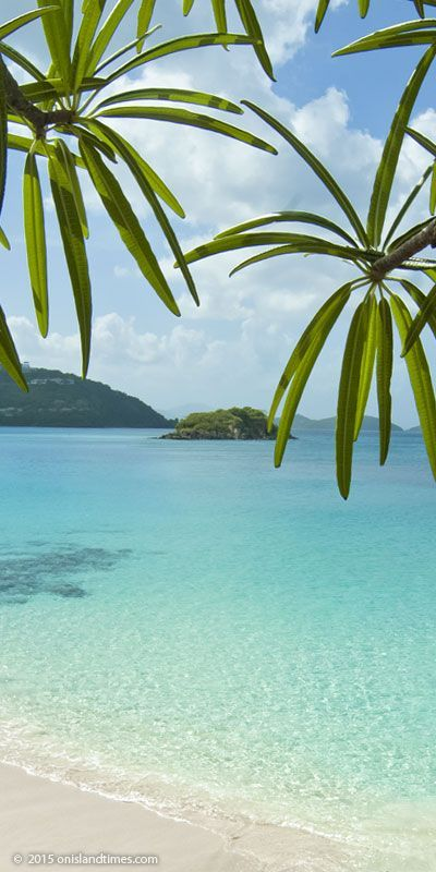 Cinnamon Bay on St John, USVI. Camp in the USVI National Park! Just steps from this beach!