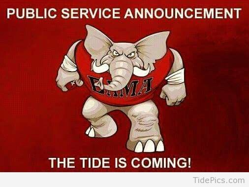 Image result for alabama football sign pics