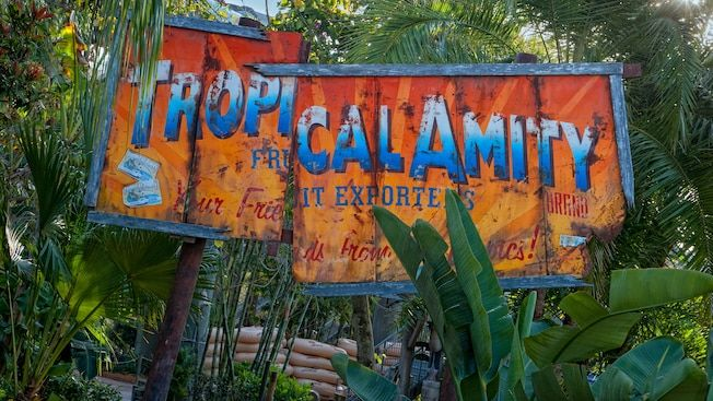 A broken sign for Tropical Amity Fruit Exporters at Crush 'n' Gusher