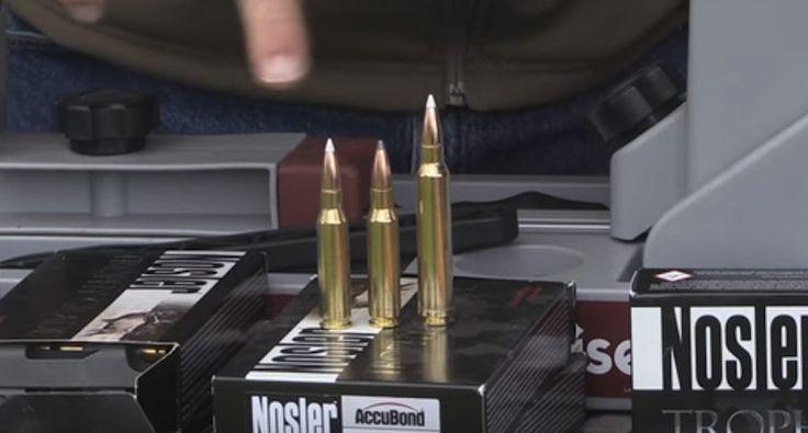 Here's what Randy Newberg considers the best elk hunting caliber.