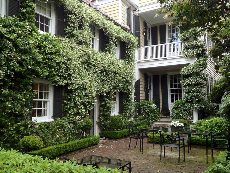 115 Best Courtyard Gardens Of Charleston And Savannah