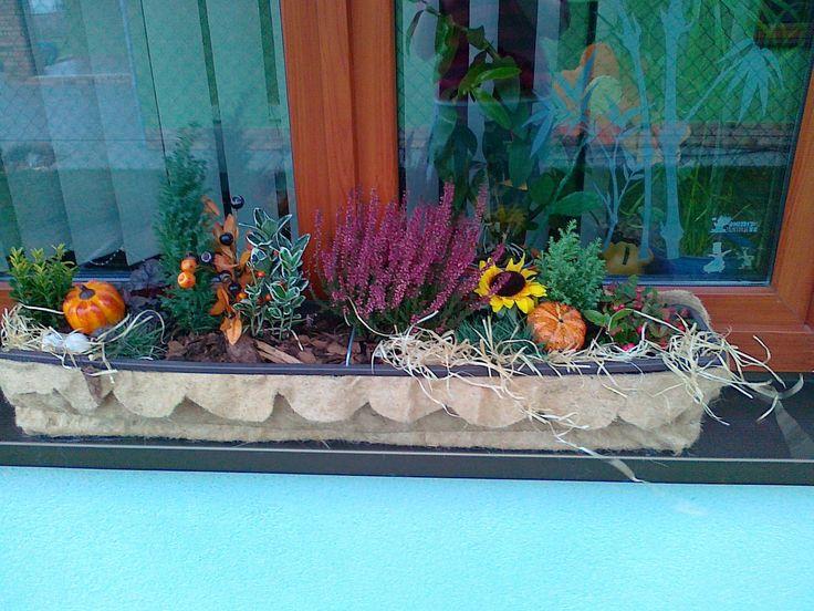 truhlíky na podzim
