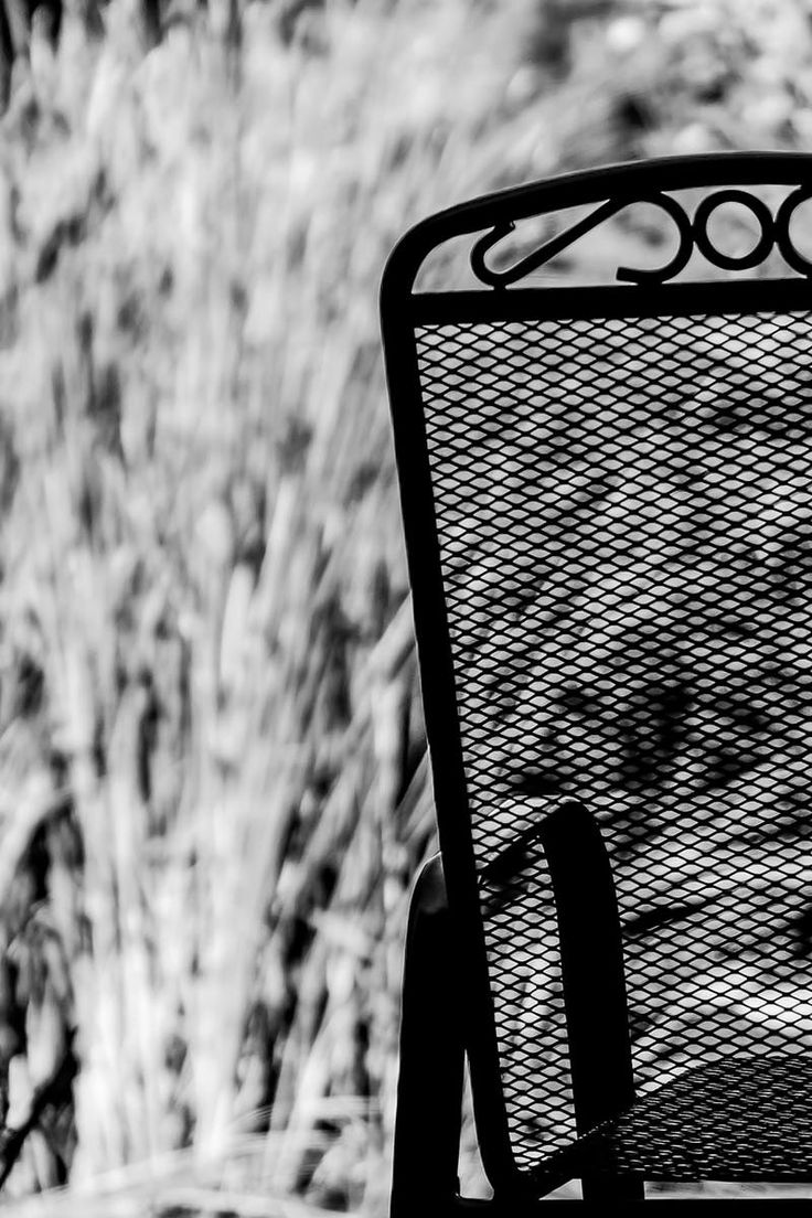 Black and white chair photography - Download This Free Photo From Pexels At Https Www Pexels Com Black And White Chairwhite