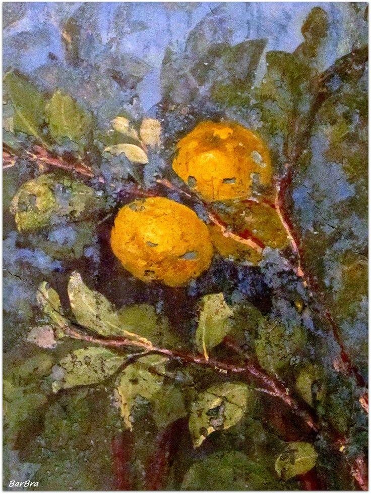 la frutta matura .... nel giardino di Livia http://zibalbar-foto.overblog.com/2014/04/giardino-dipinto.html