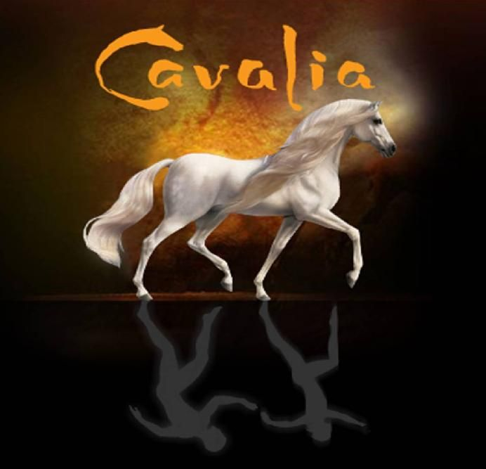 Great show - would love to see it again. Absolutely beautiful show, for anyone who loves horses it's a must see. Sixty seven horses, ten breeds. Wow!