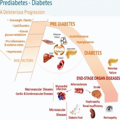 Precautions And Preventions In Prediabetes.