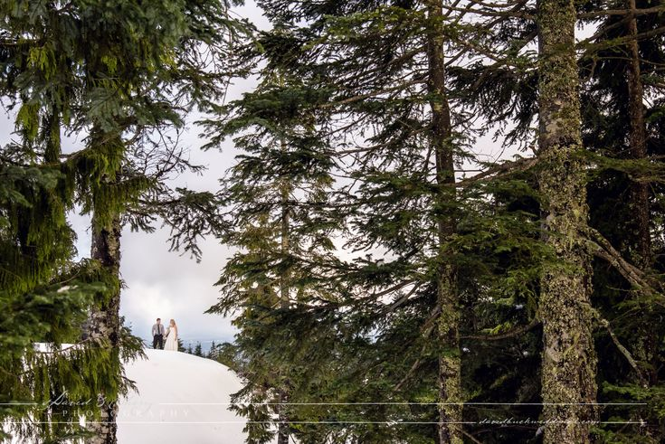 Mountain setting through the trees during this wedding at Vancouver's highest venue. Top Photographers David & Sherry Buck capture beautiful wedding image.