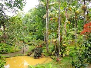 Terra Nostra Garden Hotel - Azoren - Funchal