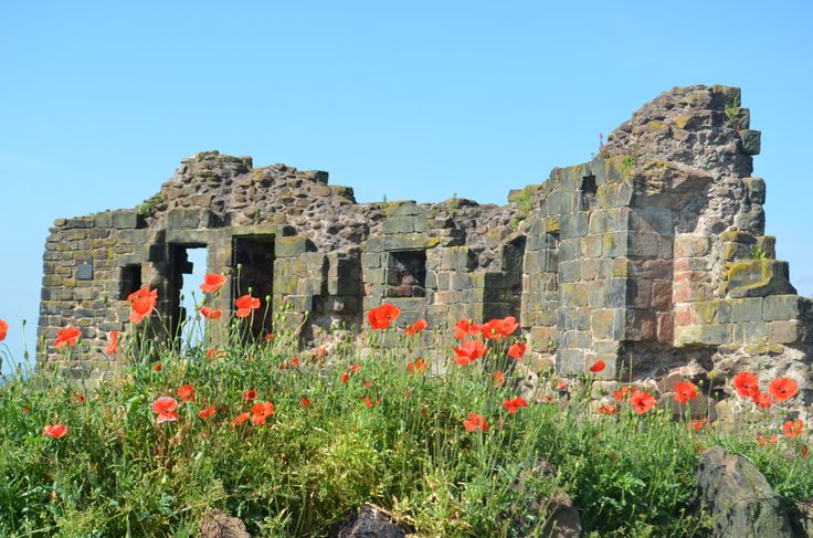 Halton Castle in bloom, 2015
