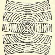 Wood movement diagram Wood shrinks most in direction of annual growth rings – tangentially 1/2 as much across the rings – radially Very little along grain – longitudinally Shrinkage greater in heavier pieces than in lighter pieces Expansion and contraction of wood members from temp change is not an important design consideration Glulam members shrink less than sawn timber members