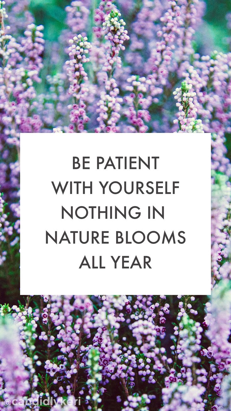 """""""Be patient with yourself nothing in Nature blooms all year"""" cute flower lavender quote inspirational background wallpaper you can download for free on the blog! For any device; mobile, desktop, iphone, android!"""