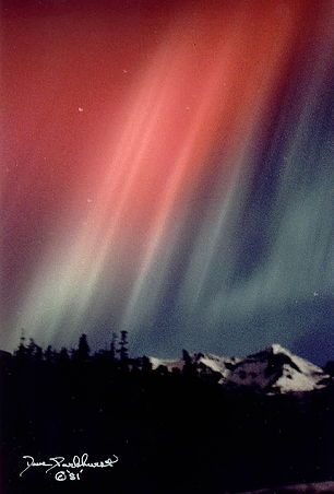 The Alaska Collection. Auroras from Cordova, Alaska Feb 4th - 5th, 1981