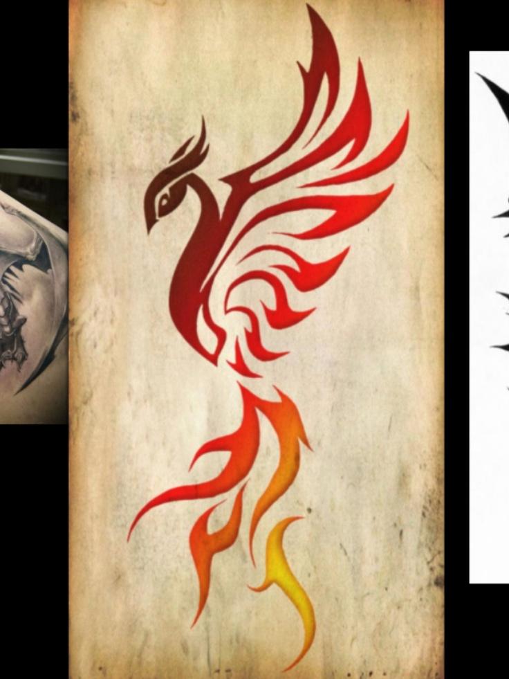 tribal phoenix tattoo pinterest phoenix. Black Bedroom Furniture Sets. Home Design Ideas