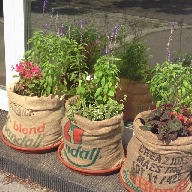 Idee für den Garten - Kaffeesäcke
