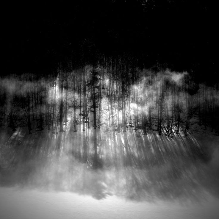 l'écharpe - Photography,  38x38 cm ©2012 by Bruno Blais -                              Tree, pyrénées, arbre, tree, hiver, snow, neige, brouillard, fog, montagne, moutain, winter, forest, forêt, nuage, cloud