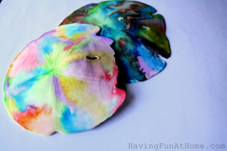 did you know painting water colors on a sand dollar creates a really neat effect? Me neither!
