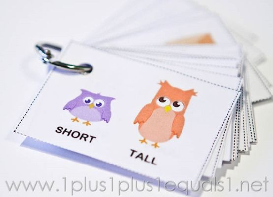 Owl Opposites Flashcards ~ Free Printable - 1+1+1=1