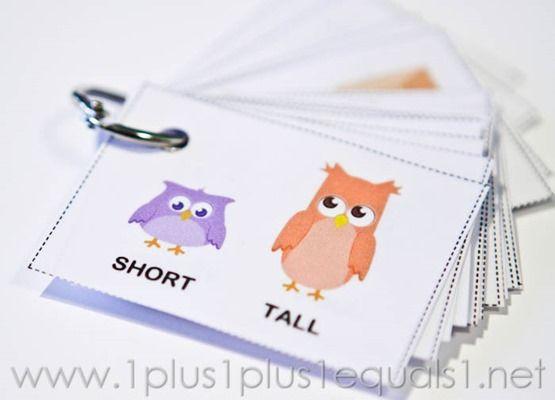 Owl Opposites Flashcards ~ Free Printable - 1+1+1=1                                                                                                                                                                                 More