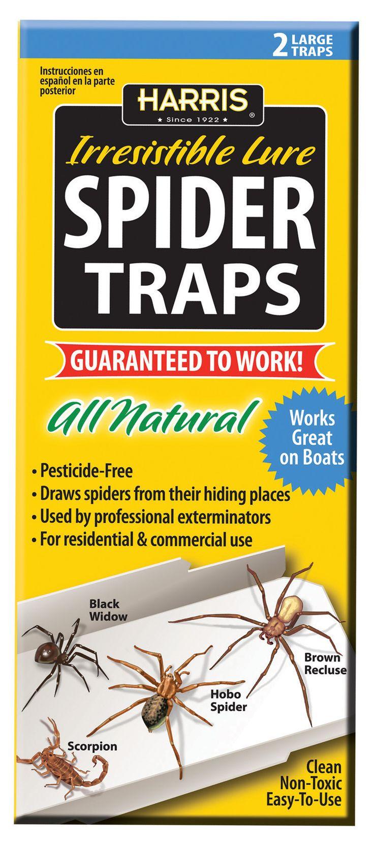 Spider Traps 2pk